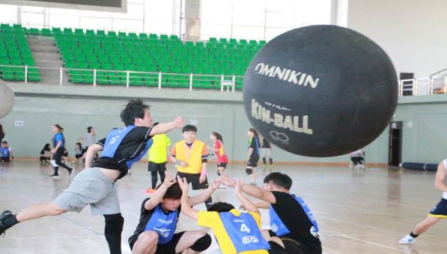 【新兴运动】Kin-ball健球团建